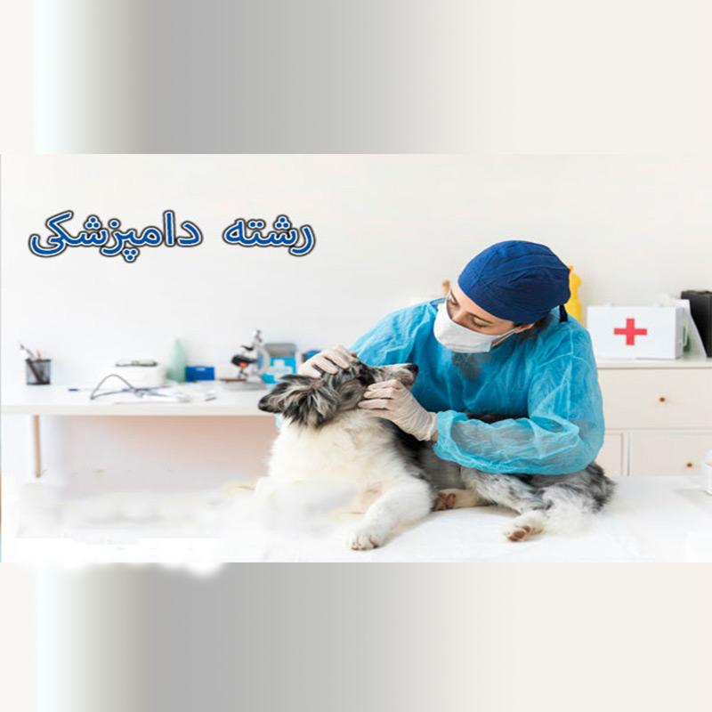 نمونه سوالات استخدامی دامپزشکی