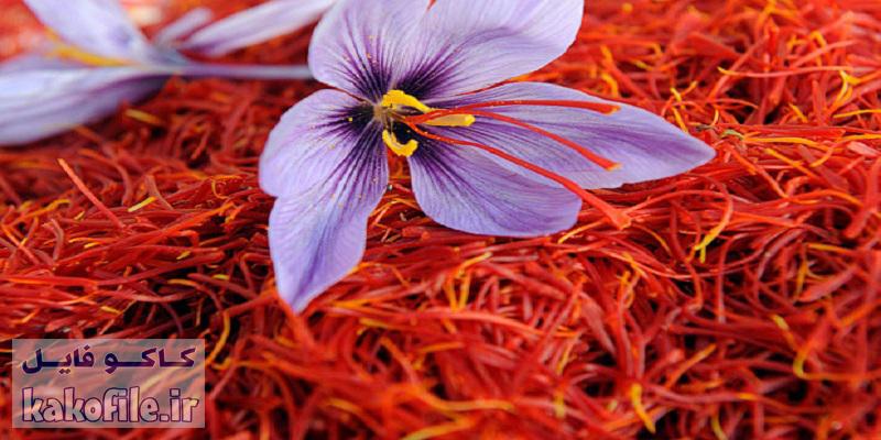 دانلود پاورپوینت صادرات در صنعت زعفران