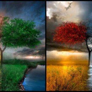 پاورپوینت بررسی چهار اقلیم